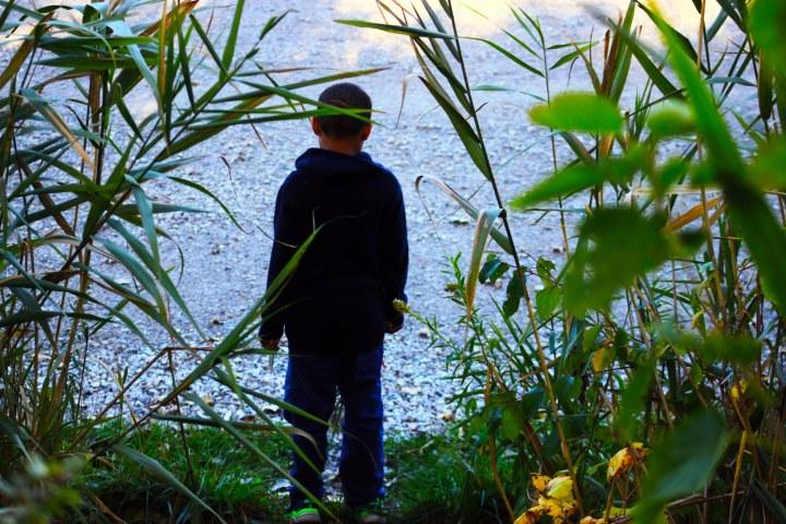 a boy behind reeds