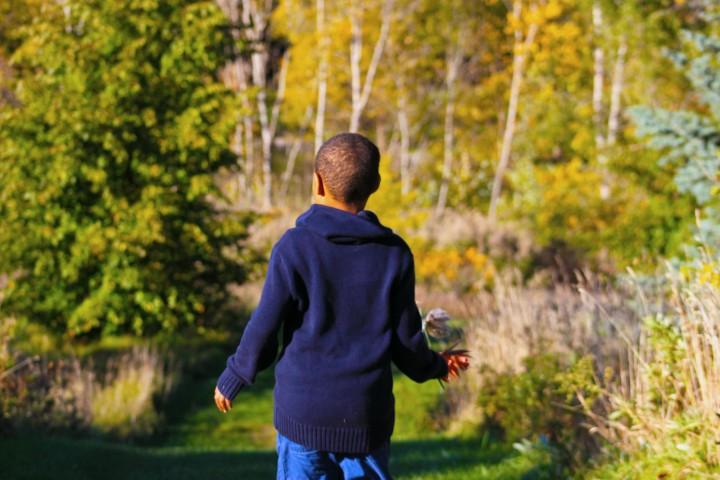 a boy beholds nature
