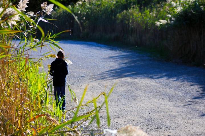 a boy holds a stalk